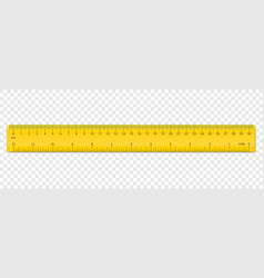 ruler centimeter and inches double side scale vector image