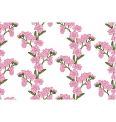 seamless pattern with wild flowers on white vector image