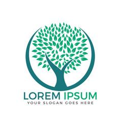 tree logo design vector image