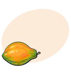 Whole unpeeled uncut papaya tropical fruit in vector