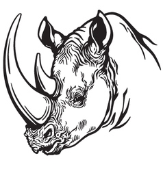 head of rhino black white vector image vector image