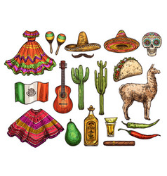 cinco de mayo mexican culture sketch symbols vector image
