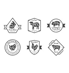 organic fresh meat premium quality retro cattle vector image