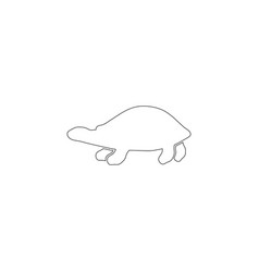 sea turtle flat icon vector image
