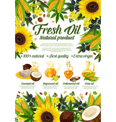 Organic cooking oils sunflower and olive vector