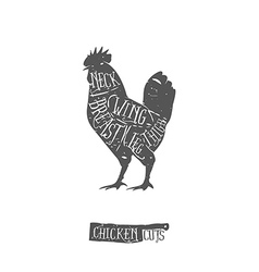 Vintage typographic chicken cuts diagram vector