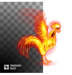Fiery golden cockerel on transparent background vector