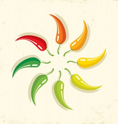 Chilli on paper vector image vector image