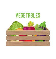 box with vegetables basket with products vector image