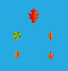 flat icon leaf set of foliage frond linden and vector image