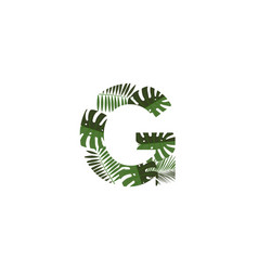 logo letter g tropical leaves vector image