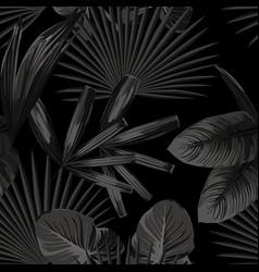 monochrome black white tropical vector image