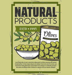 Organic pickle olives natural food snacks vector