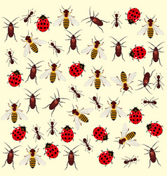 Seamless pattern with colored bugs vector