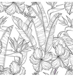 seamless pattern with tropical palm leaves and vector image