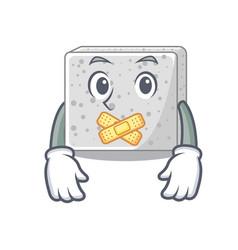 Silent fresh feta cheese isolated on maskot vector