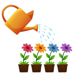 Watering can and flowers in garden vector