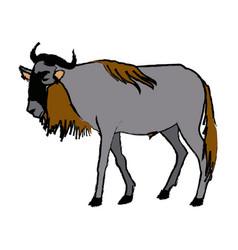 Wildebeest standing african wildlife animal vector