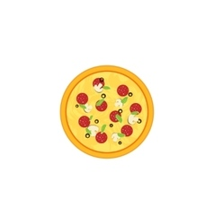 Pizza isolated on white vector image