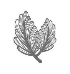 rustic flower decoration design vector image