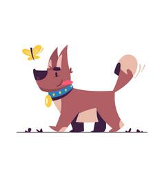 cute little dog flat vector image