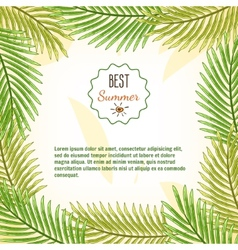 Frame of palm branches best summer background vector image vector image
