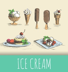 Ice cream types vector image
