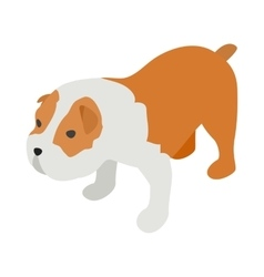 Staffordshire terrier icon isometric 3d style vector image