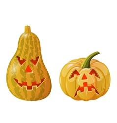 Two pumpkins vector image