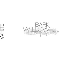 White willow bark text word cloud concept vector