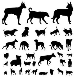Dog silhouette set vector image