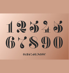 font numbers in classical french didot vector image