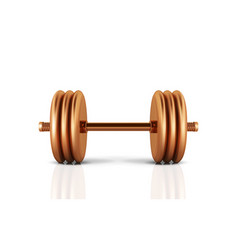 golden realistic dumbbell isolated on white vector image
