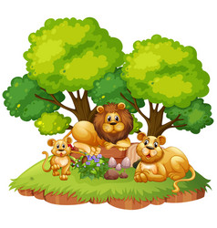 lion family on isolated nature vector image