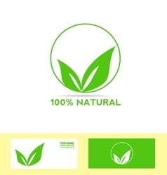 Natural product bio eco vegan vector image