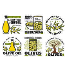 Premium quality farm olive oil and food products vector
