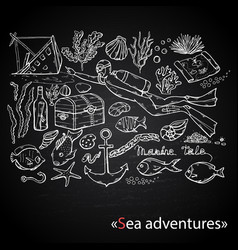sea adventures scuba diver on chalk vector image