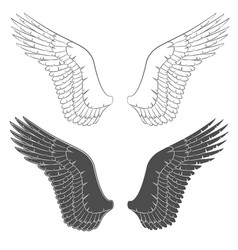set of black and white with wings vector image