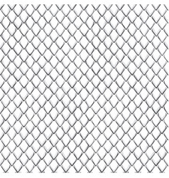 Snake skin black and white seamless pattern vector