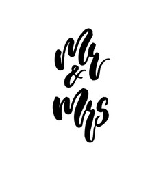 Wedding calligraphy lettering mr and mrs on white vector