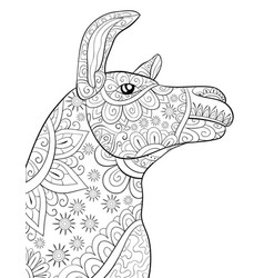 adult coloring bookpage a cute head of lama image vector image