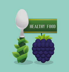 blueberry healthy food diet vector image