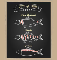cuts of fish guide vector image