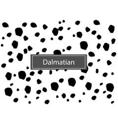 dalmatian seamless pattern vector image