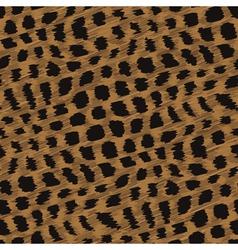 fur print vector image