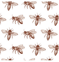 Honey bee seamless pattern vintage doodle sketch vector