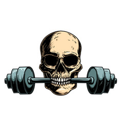 human skull with barbell in his teeth design vector image