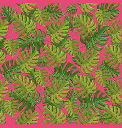monstera plant tropical seamless pattern vector image