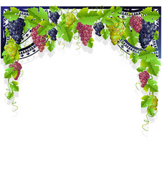 Vintage frame grapes vector