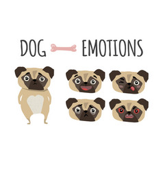 cute dog set of emotions vector image